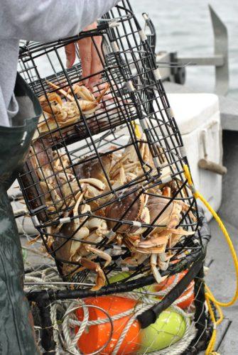 crabbing oregon coast